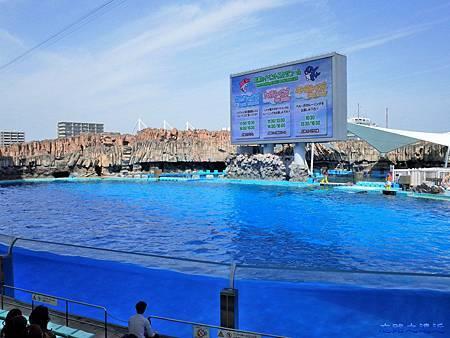 20名古屋水族館海豚表演場.jpg