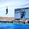 25名古屋水族館海豚表演-5.jpg