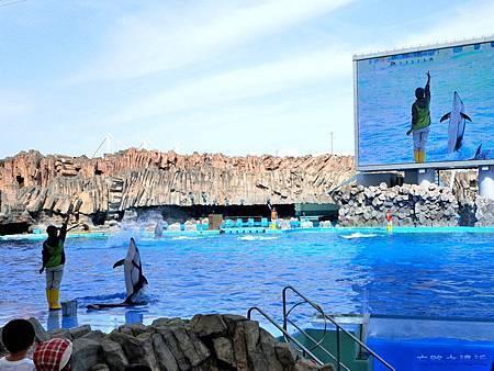 26名古屋水族館海豚表演-6.jpg