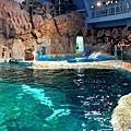 30名古屋水族館白鯨池.jpg