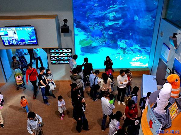 33名古屋水族館赤道之海展區.jpg