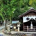 20針綱神社神馬.jpg