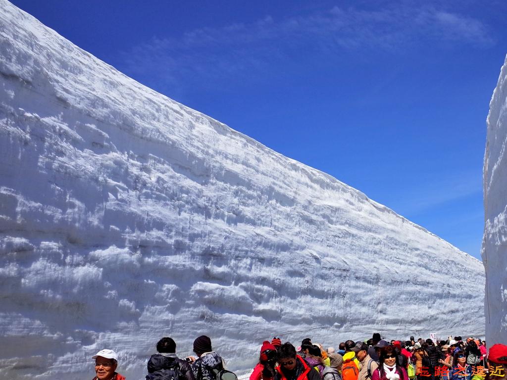 39黑部立山雪之大谷最高點人群.jpg