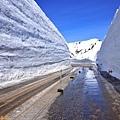 41黑部立山雪之大谷終點.jpg