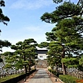 5富山城址公園松木步道.jpg