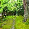 12那谷寺書院庭園.jpg
