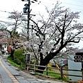 4往安樂寺參道山路.jpg
