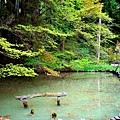 19安樂寺池塘.jpg