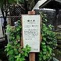 8鎌倉鐵之井-2.jpg