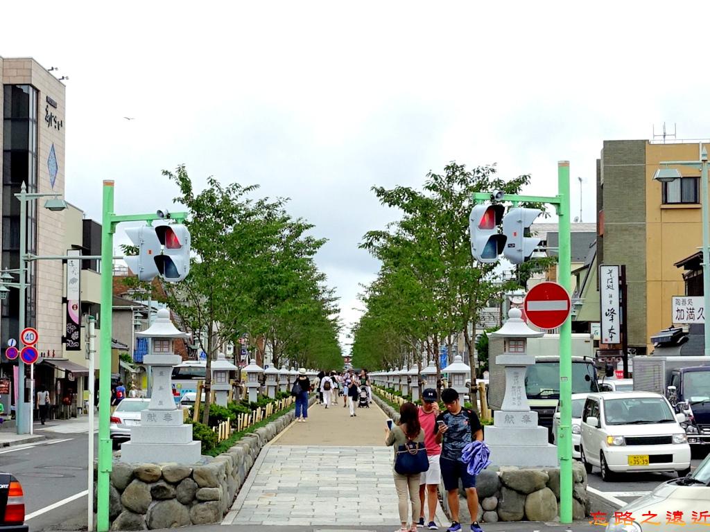 9鎌倉若宮大路段葛.jpg