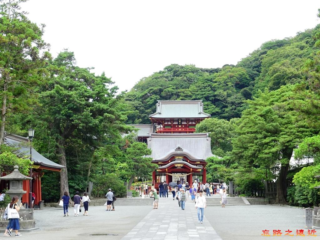 16鶴岡八幡宮參道.jpg