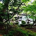 10長谷寺放生池-1.jpg