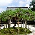 11中尊寺本堂庭院.jpg