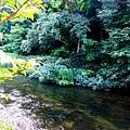 17游泉房間庭院面川.jpg