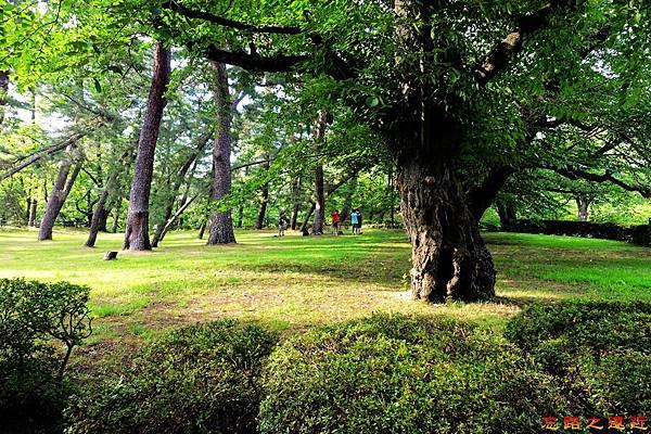9弘前城公園內孩童.jpg