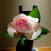 22都わすれ房間入口玄關-玫瑰花.jpg