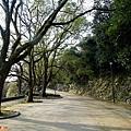 44和歌山城緩坡道.jpg