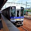 1南海電鐵高野山急行.jpg