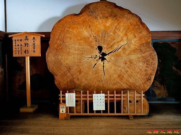 24高野山金剛峯寺內高野杉.jpg