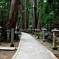 10高野山奧之院參道.jpg