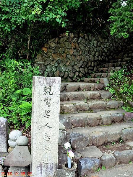 24高野山奧之院親鸞聖人墓參道.jpg