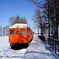 20幸福車站橘色車廂-1.jpg