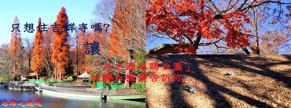 井之頭公園BANNER