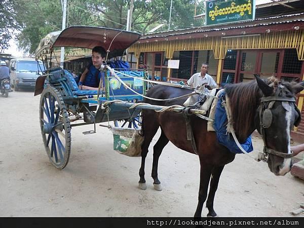 娘烏主要交通工具--馬車