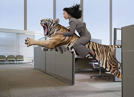 Riding-The-Tiger-Woman