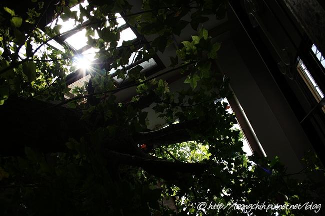 hsieh_house300.jpg