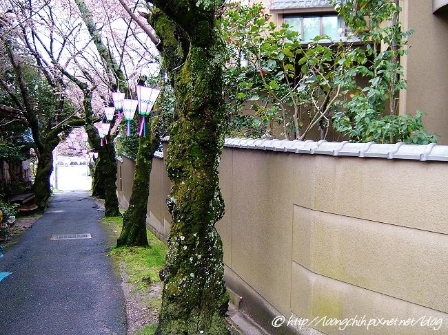 shigisan_084.jpg