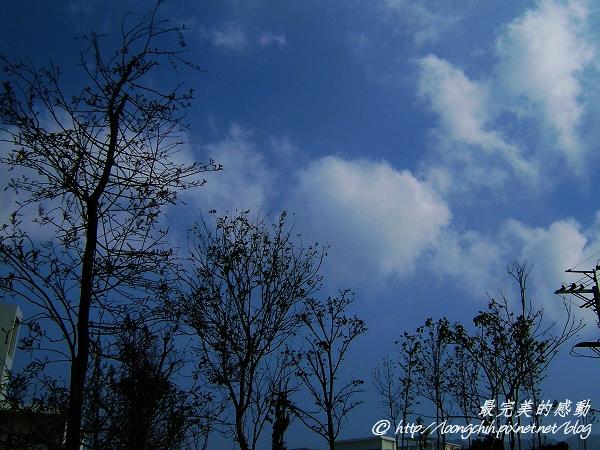 心之芳庭014.jpg