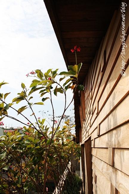 hsieh_house243.jpg