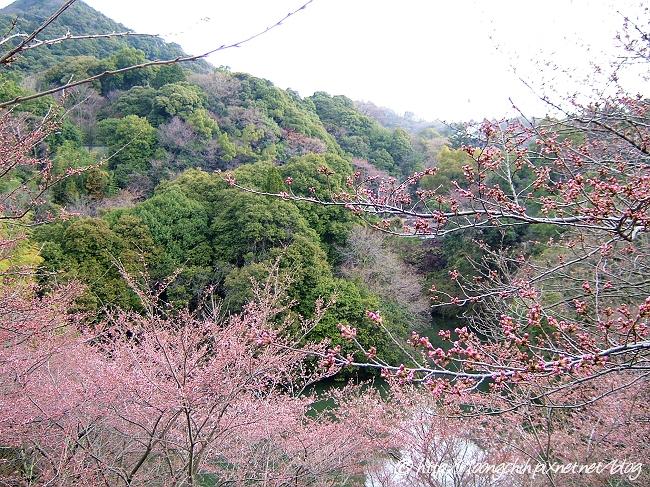shigisan_087.jpg