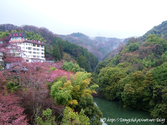shigisan_022.jpg