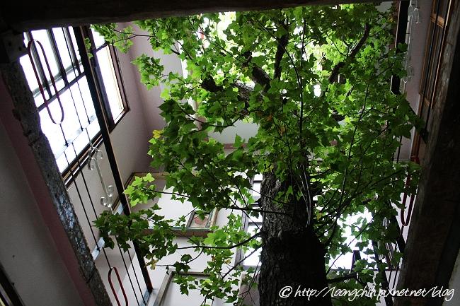 hsieh_house058.jpg