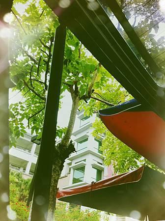照片0124 004.jpg