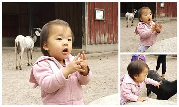 與小茵妹去動物園4_調整大小.jpg