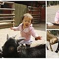與小茵妹去動物園5_調整大小.jpg