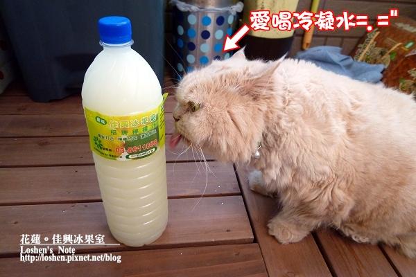 花蓮佳興冰果室特調檸檬汁