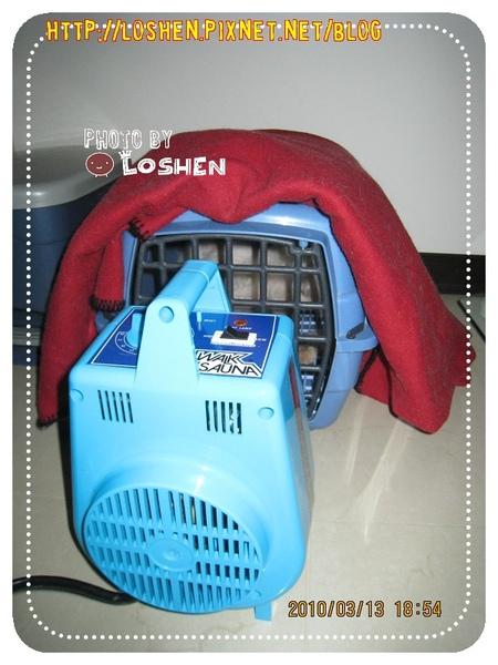 寵物烘毛機-正在烘毛中