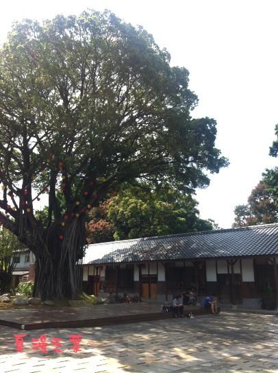 照片 038手機樹