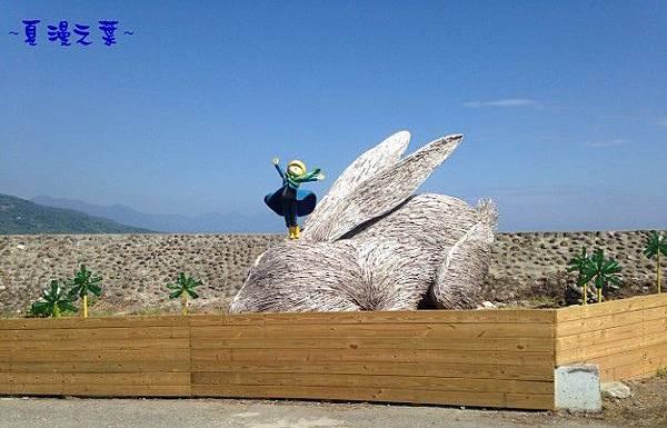 巴西里海岸 兔子