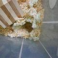 某天...鼠球家突然出現好大的空洞...