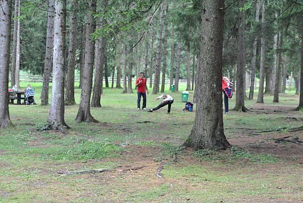 平左羅訓練營樹林中的囧普