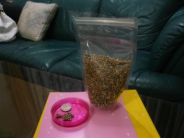 適合給年老或是產後母鼠作為補充氣血的營養品使用