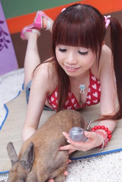 以下是阿鼠我綁架兔子全紀錄