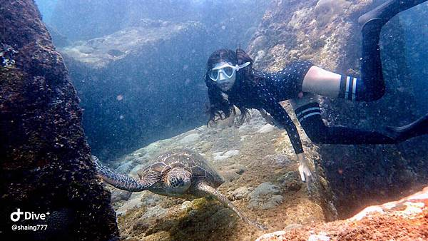 自由潛水.jpg