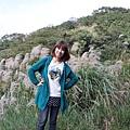 台北景點一日遊  陽明山擎天崗芒花季