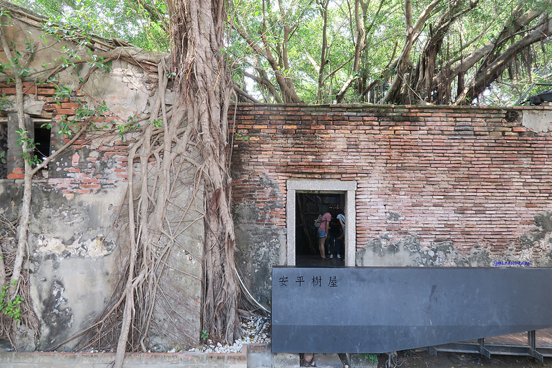 tainan台南一日遊-樹屋-綠色隧道-台江公園-17度環島隨拍 (11)